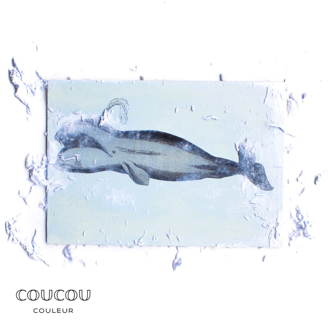 Foto-Transfer-Anleitung-Coucou-Couleur-Kreidefarbe-Ahoi