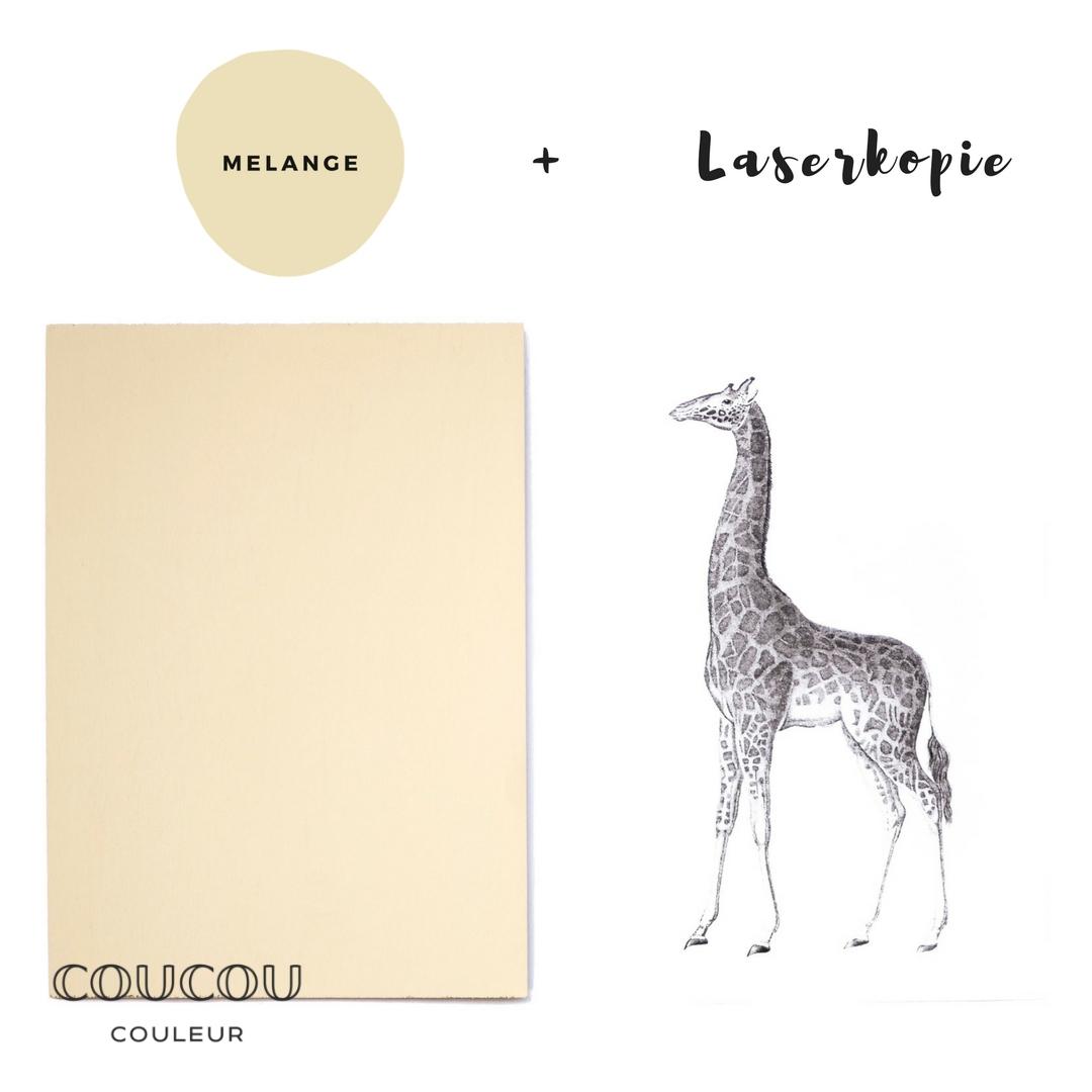 Foto-Transfer-Anleitung-Coucou-Couleur-Kreidefarbe-Melange