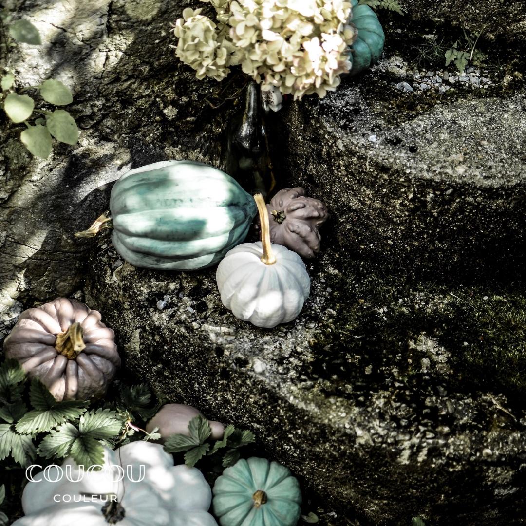 Kurbisse-Herbstedeko-Garten-Coucou-Couleur-Kreidefarbe-DIY