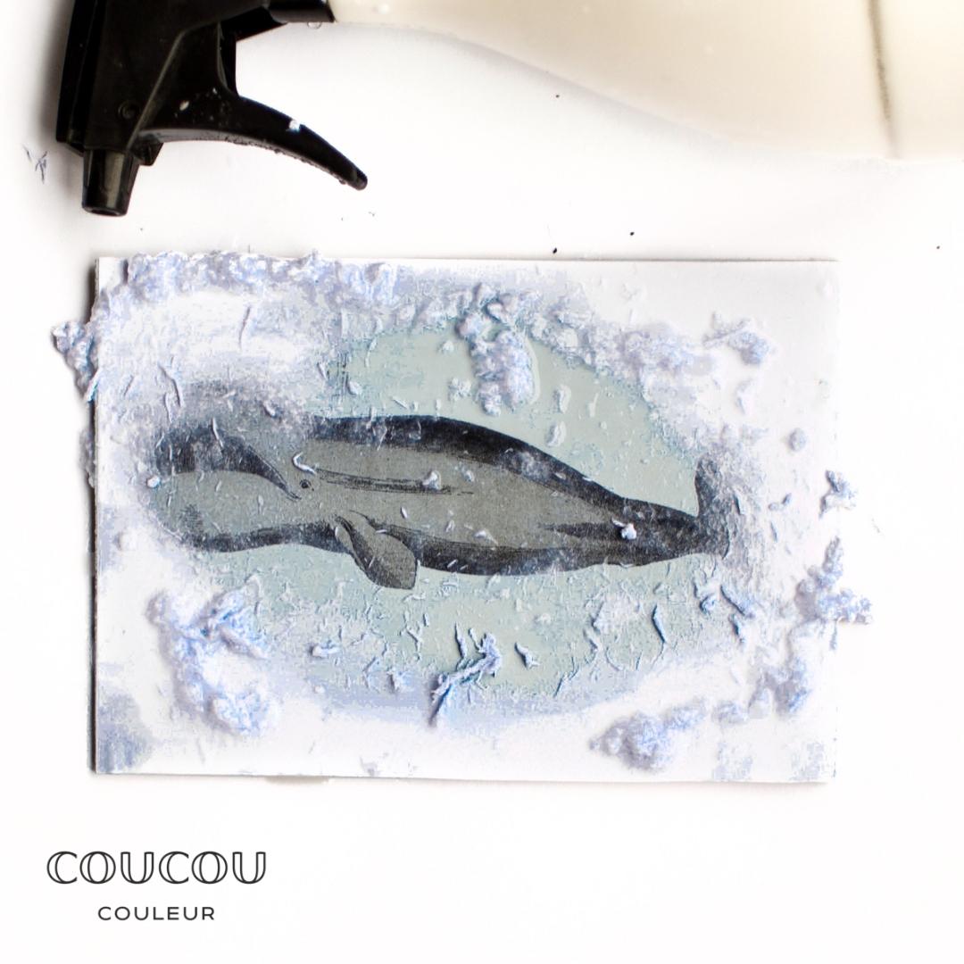 Foto-Transfer-DIY-Anleitung-Coucou-Couleur-Kreidefarbe