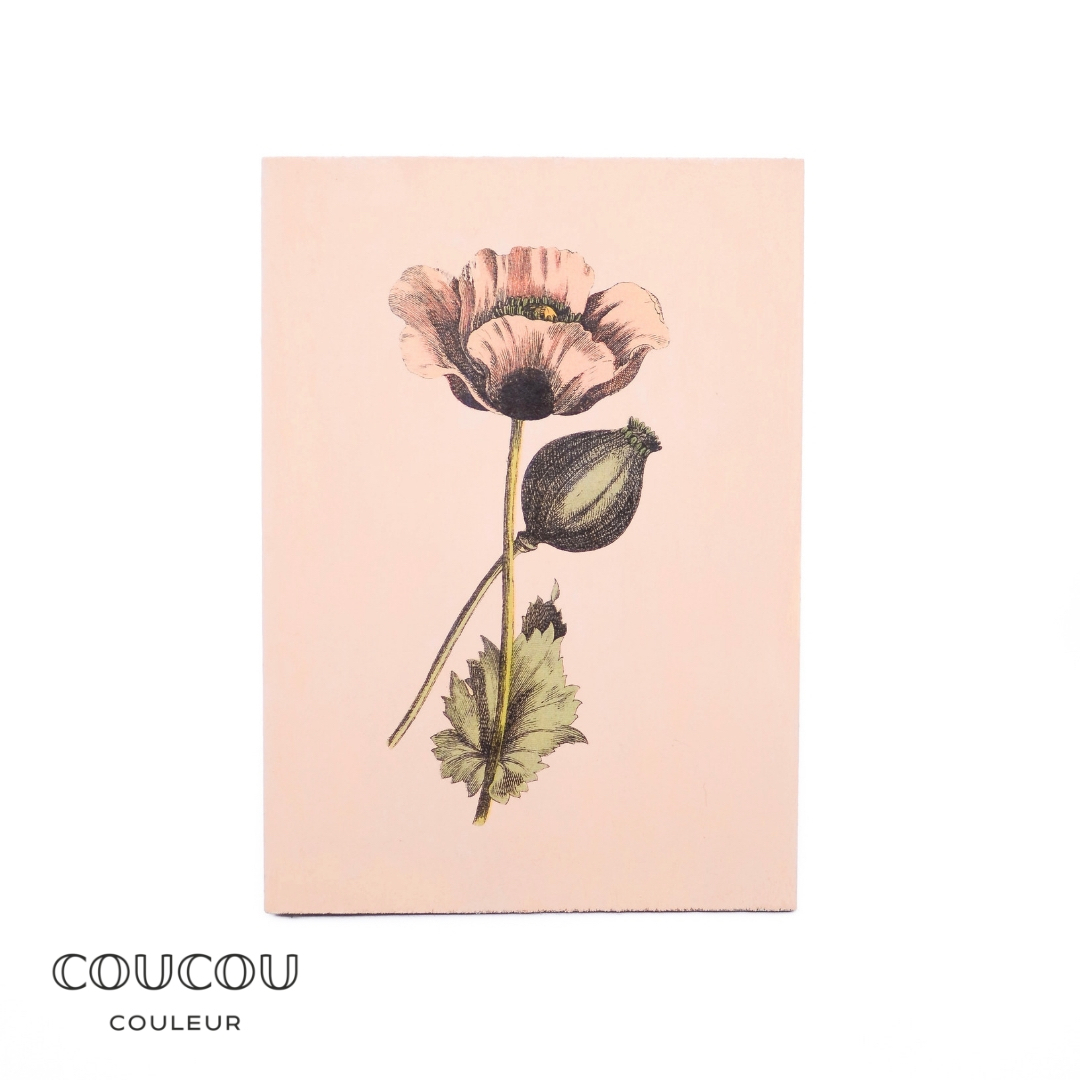 Foto-Transfer-Anleitung-Coucou-Couleur-Kreidefarbe-Peche