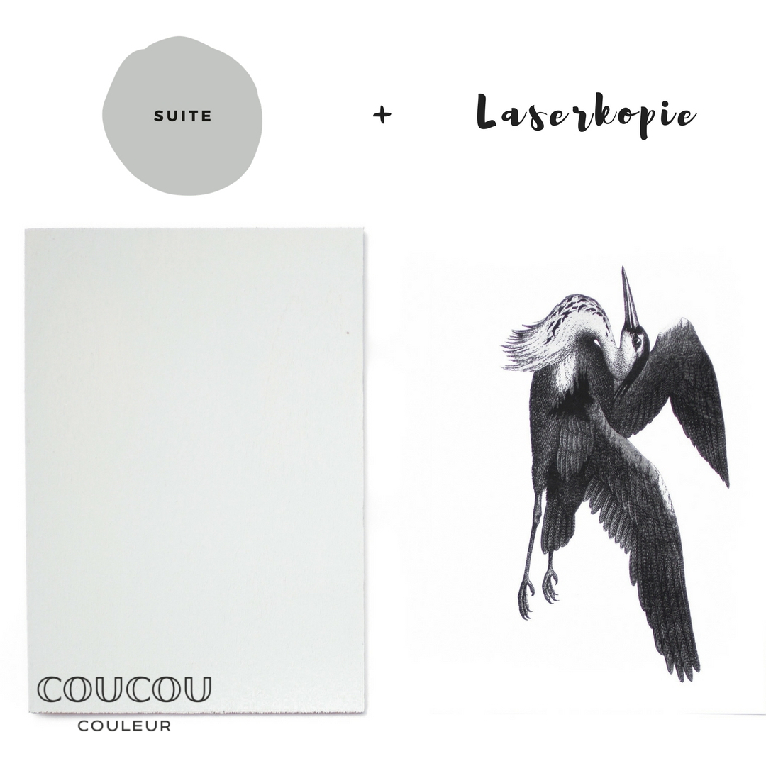 Foto-Transfer-Anleitung-Coucou-Couleur-Kreidefarbe-Suite
